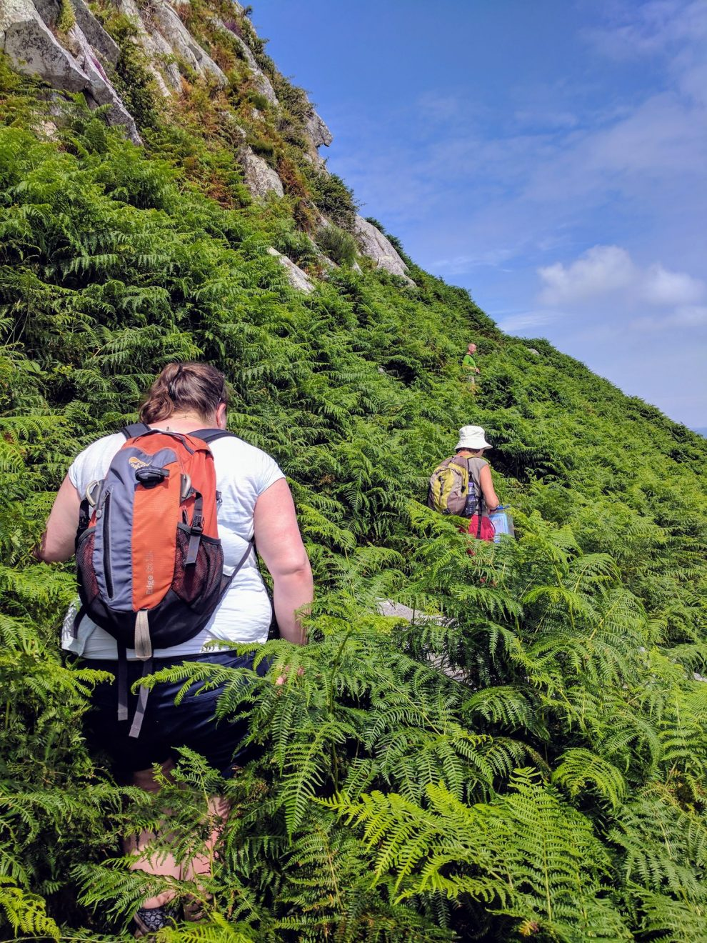 Exploring the jungle-like east coast of Lundy