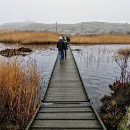 Walking across a bridge at Marstrand